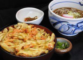 桜海老のかき揚げ丼とミニ蕎麦・うどん
